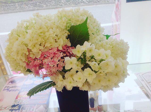 「お客様から立派な紫陽花を頂きましたネイルアートもこの時期は、紫陽花ネイルが大人気です小ぶりなお花がたくさんあると、可愛らしい雰囲気に仕上がりますよネイルサロン 美NAIL.Add: 神戸市北区北五葉1-6-1HP: http://www.bnail.jp/.#nail #nails #nailart #gelnail #kobe #ネイル #ネイルアート #ジェルネイル #ネイルデザイン #神戸市北区ネイルサロン #ネイルサロン美ネイル #美NAIL #シンプルネイル #上品ネイル #大人ネイル #クリアネイル #ナチュラルネイル #紫陽花ネイル #梅雨ネイル2018 (Instagram)